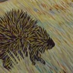 Galloping Porcupine, Upper Milk River, 2009